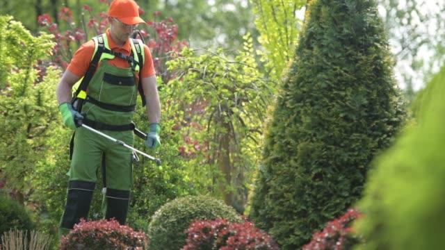 vidéos et rushes de travail d'insecticide de jardinier caucasien et de plantes de jardin - herbicide