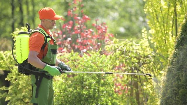 vidéos et rushes de jardinier caucasien dans sa 30s préparant pour l'opération d'insecticide de usines - herbicide