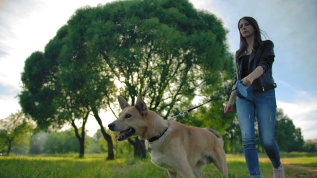 Caucasian girl in jeans leads her dog for a walk in park. Profile shooting in slow motion