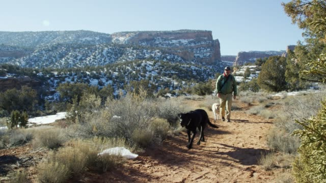 a caucasian male photographer in his forties dressed in hiking gear with his dogs walks along a dirt path in the high desert of western colorado in winter (near the colorado national monument - grand junction, colorado) - trekking sul ghiaccio video stock e b–roll