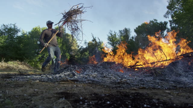 A Caucasian Man in his Forties Throws Wooden Sticks and Branches on to a Large Flaming Burn Pile with a Pitchfork Outdoors A Caucasian Man in his Forties Throws Wooden Sticks and Branches on to a Large Flaming Burn Pile with a Pitchfork Outdoors (Weed burning & ditch burning) heap stock videos & royalty-free footage