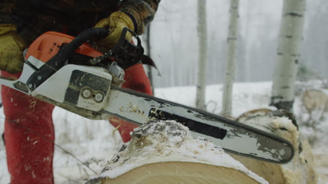a caucasian man in his thirties with a beard picks up a chainsaw and cuts a wooden aspen log on a snowy winter day in the forest and then walks away - motosega video stock e b–roll