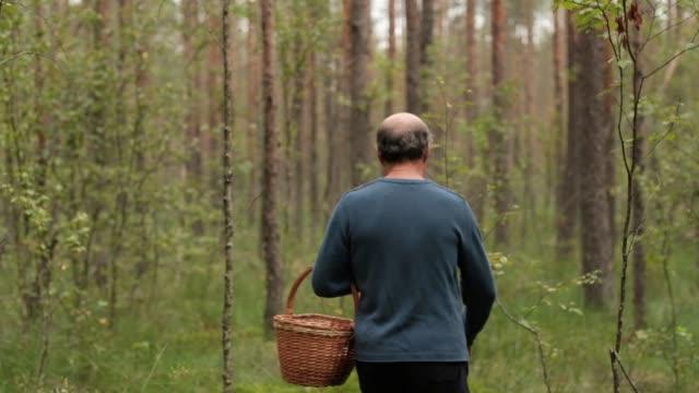 kaukasiska mogen mushroomer promenader mellan träd och samla svamp - höst plocka svamp bildbanksvideor och videomaterial från bakom kulisserna
