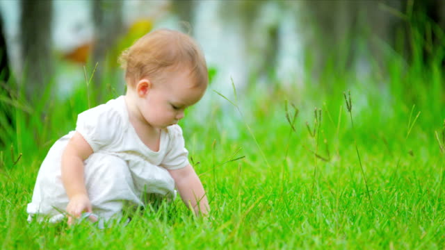 Caucasian toddler playing in green garden video