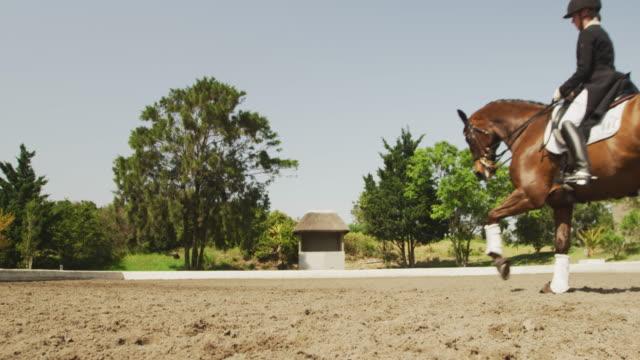 kaukasisk kvinna rider sin häst - häst tävling bildbanksvideor och videomaterial från bakom kulisserna
