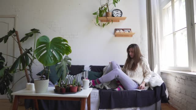 vídeos de stock e filmes b-roll de caucasian young woman sits on a soft sofa and takes cover with a blanket - hygge or lagom concept - hygge