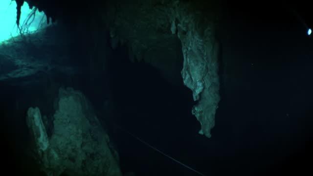 Grot duiken in ondergronds water van onderwater Yucatan Mexico cenotes. video