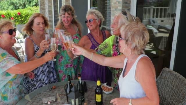 fira på semester - vin sommar fest bildbanksvideor och videomaterial från bakom kulisserna