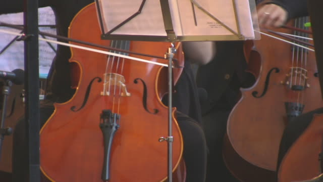 Cello player (HD) video
