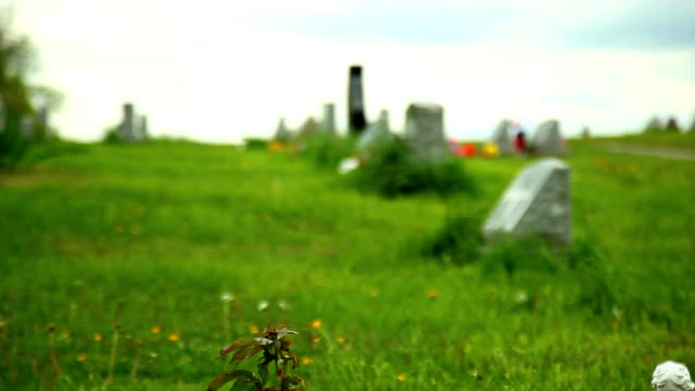 Cemetery background with USA flag video