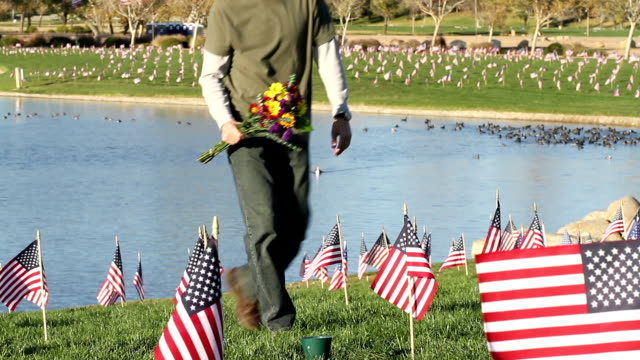 cemetery man finds grave on veterans day - memorial day stock videos & royalty-free footage