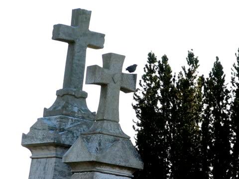 cimitero - appollaiarsi video stock e b–roll