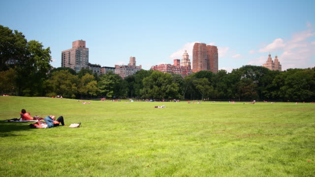 cenral park relax place 4k time lapse from new york city video