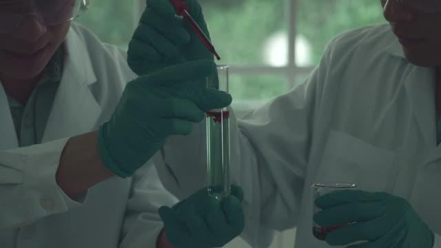 vídeos de stock e filmes b-roll de centers for disease control - glóbulo vermelho