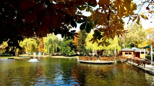 vídeos de stock, filmes e b-roll de central parque da cidade com lagoa artificial é ponto de relaxamento popular. as árvores coloridas do outono e o ambiente natural dão a energia positiva aos habitantes e aos turistas - multicóptero