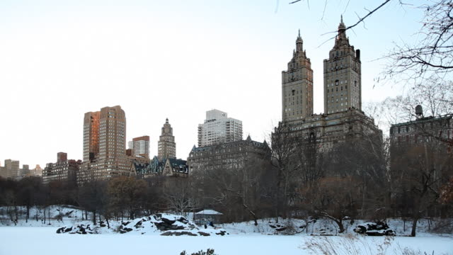 Central Park and Twin Towers video