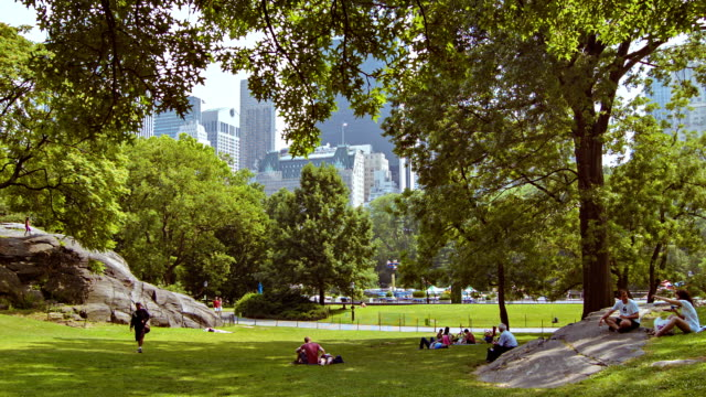 Central park in New York City background central park manhattan stock videos & royalty-free footage