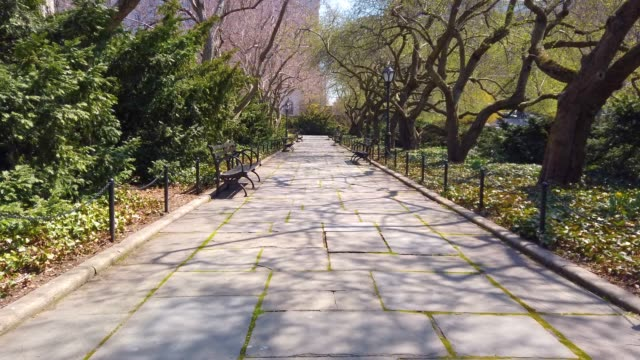vidéos et rushes de central park, manhattan - parc public