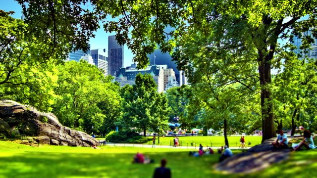 vidéos et rushes de central park, à new york - parc public