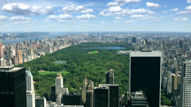Central Park, New York Timelapse of Central Park on a sunny day, New York, USA    central park manhattan stock videos & royalty-free footage