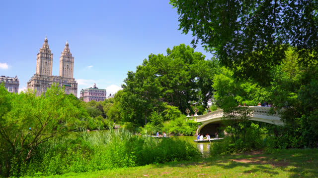 Central park New York nature and city central park manhattan stock videos & royalty-free footage