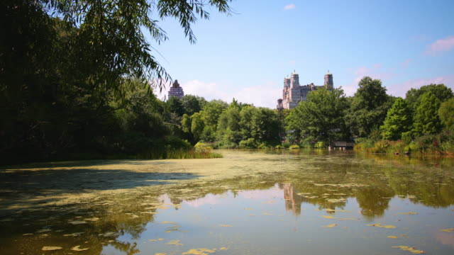 central park sunny day lake 4k time lapse from new york video