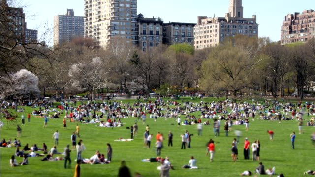 Central Park Time Lapse Time lapse, overlooking a crowded field in Central Park as people enjoy a warm Spring day.  central park manhattan stock videos & royalty-free footage