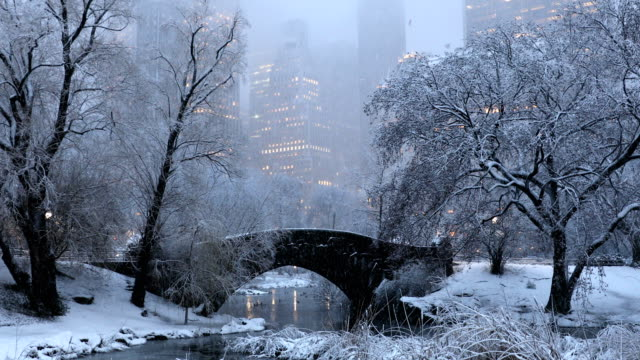 Central Park Winter Nights Snow falling over Central Park at dusk with view of the midtown Manhattan skyline in New York City. central park manhattan stock videos & royalty-free footage