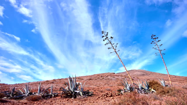 Cerro del Aceitunal and Montaña de Piedra Sal time lapse video,  Fuerteventura video
