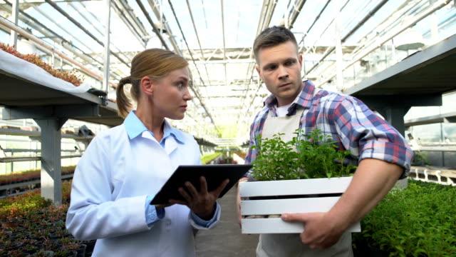сертификация эксперт проверки фермы, обсуждая сельскохозяйственные технологии с фермером - expert стоковые видео и кадры b-roll