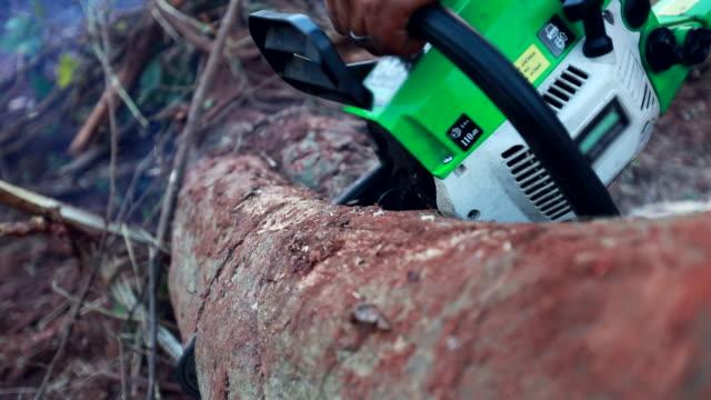 chainsaw cutting a wood ,slow motion - motosega video stock e b–roll