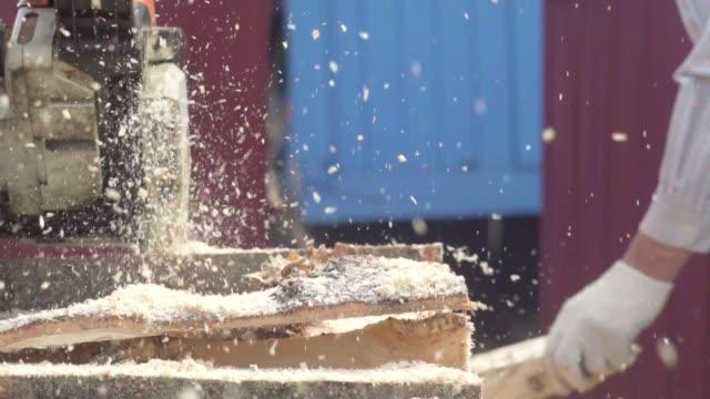 stockvideo's en b-roll-footage met kettingzaag zagen hout - boomstam