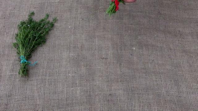 Chamomile, mint,balm,lemon balm,marigold,calendula,savory and lavender fresh various medical healing herbs bunch on linen cloth. Chamomile, mint,balm,lemon balm,marigold,calendula,savory and lavender lip balm stock videos & royalty-free footage
