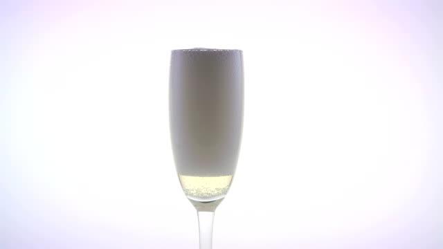 vidéos et rushes de champagne versé dans le verre. fond blanc - flûte à champagne