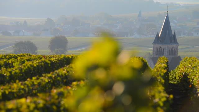 vidéos et rushes de champagne vignobles de la montagne de reims de la marne service à proximité de ville-dommange, champagne, d'ardenne, france, europe - champagne