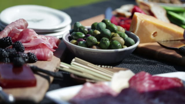 Charcuterie Outdoor Picnic Charcuterie Outdoor Picnic pickle stock videos & royalty-free footage