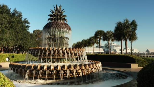 Charleston South Carolina pineapple fountain Waterfront Park and the Pinapple Fountain in historic South Carolina on the Cooper River south carolina stock videos & royalty-free footage