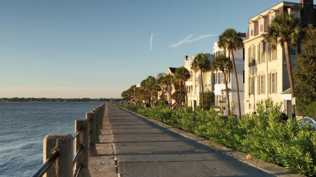 Charleston South Carolina waterfront in the morning Charleston South Carolina row of old historic federal style houses on Battery Street  USA south carolina stock videos & royalty-free footage