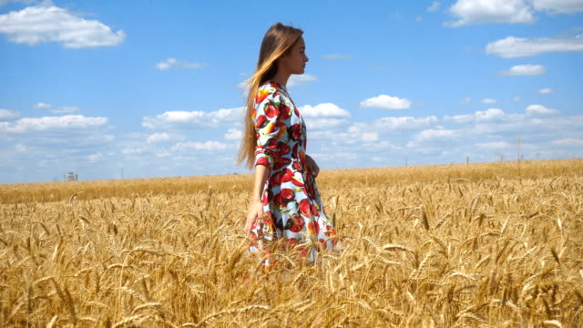 charming girl in plte walks through the wheat field video