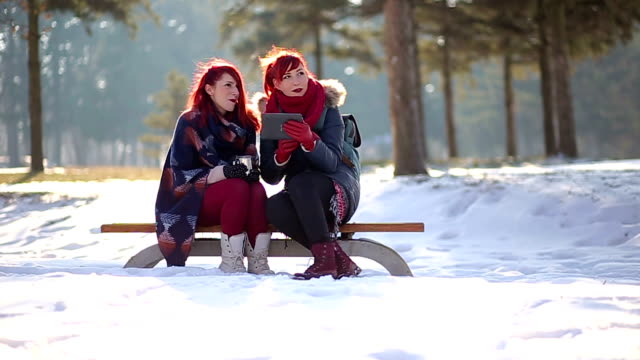 Charming Red-Haired Girls Chatting On Free Winter Bench At Park video