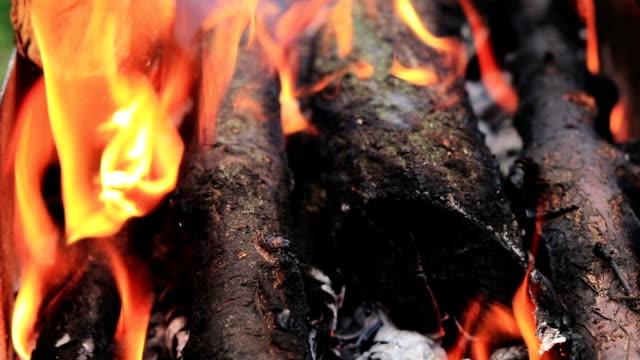 Charred wood in the fire video