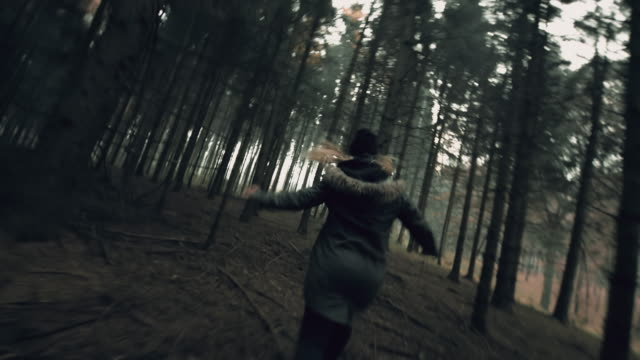 любительская видео съемка преследуя молодая женщина в лесу - побег стоковые видео и кадры b-roll