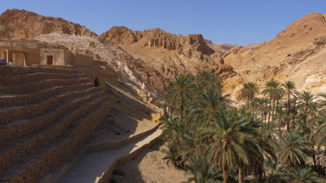 Chebika oasis with palm trees in canyon, Sahara desert, panning view Chebika oasis with palm trees in canyon, Sahara desert, panning view. Panoramic landscape with mountains in Tunisia, North Africa canyon stock videos & royalty-free footage