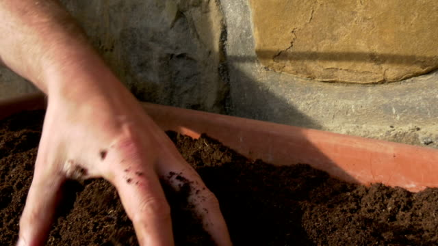 checking fresh soil male hand checking fresh soil in flowerpot. slowmotion 50fps HD handful stock videos & royalty-free footage