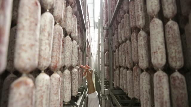 vídeos de stock, filmes e b-roll de verificação de suspensão pepperoni - salsicha