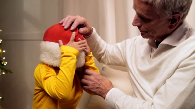 Cheerful aged man wearing Christmas hat on his grandson Happy time at home. Positive delighted elderly man wearing a Christmas hat on his grandson while sititing near Christmas tree while resting at home setter dog stock videos & royalty-free footage