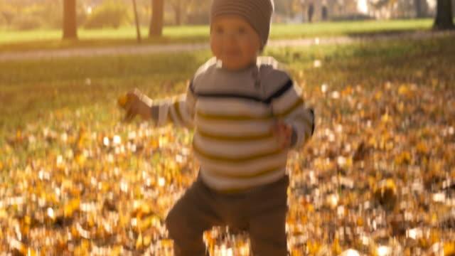 stockvideo's en b-roll-footage met vrolijke baby jongen wandelen in het park - background baby