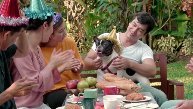 fröhliche geburt party große familie im freien - gartenparty stock-videos und b-roll-filmmaterial