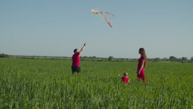 Cheerful family flying colorful kite in countryside