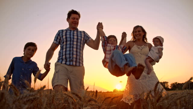 SLO MO Cheerful family walking in wheat field at sunset video